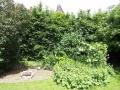 B&B-achter-in-de-tuin